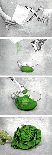 Extraits la salade